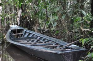 Amazon canoes